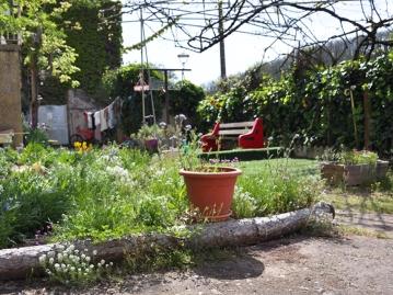 ARLEQUINS_jardin
