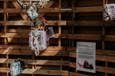 Scénographie Alma Kaiser pour le salon du livre de gaillac, Tarn, 2018.